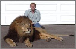 roman_lion